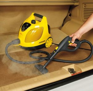 best professional steam cleaner reviews